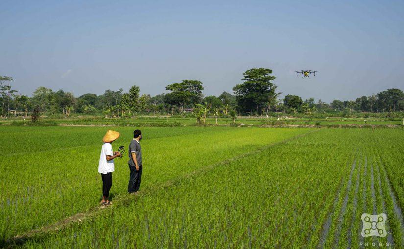 3 Alasan Profesi Petani Menarik bagi Generasi Muda