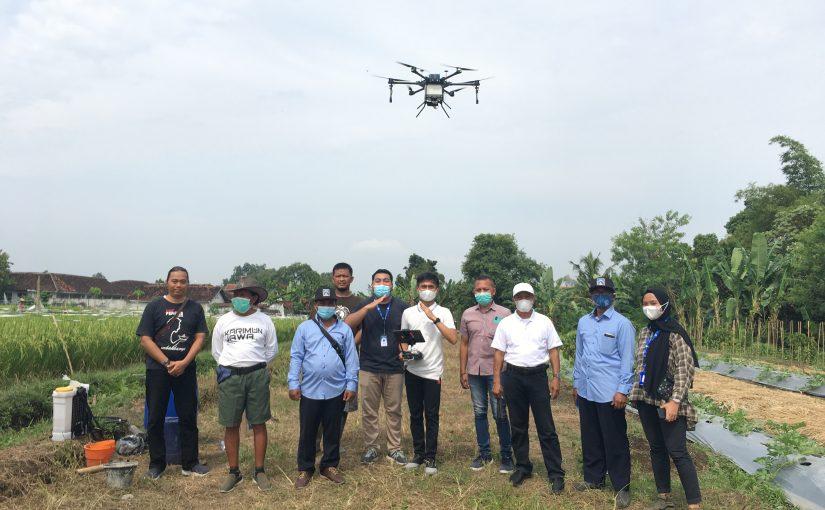 Jasa Spraying untuk Solusi Lahan Pertanian Kalasan, DIY